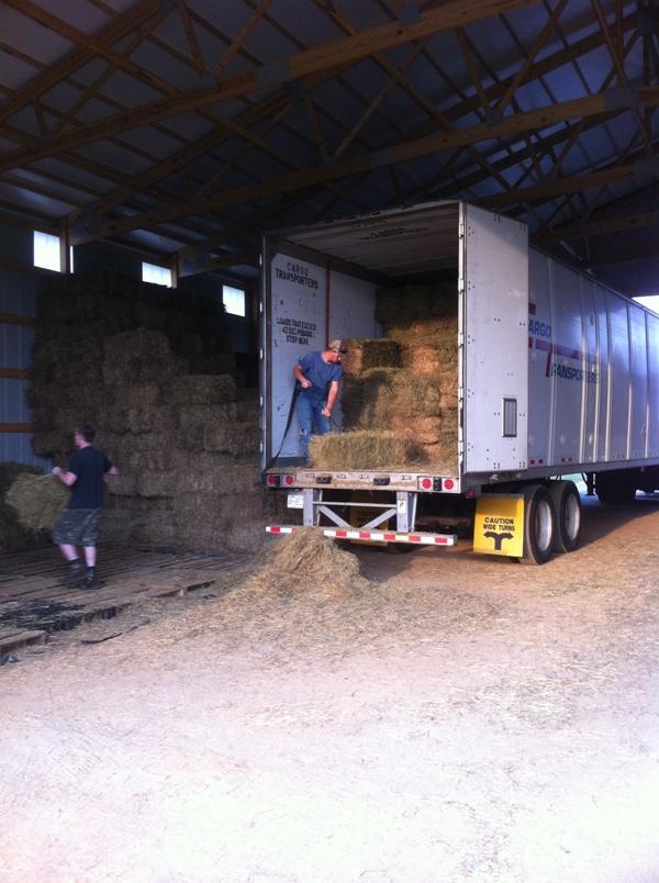 the best attitude 6333c 6aea5 Staf Unloading Hay